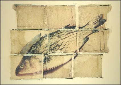 Fish Mozaic