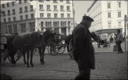 Vienna 2011-2