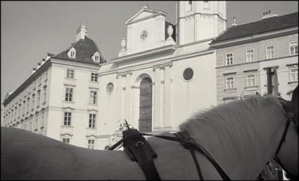 Vienna 2011-3