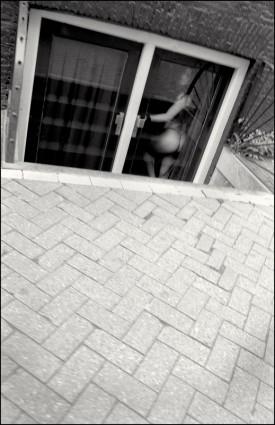 aafp, 2007, A'dam, Window